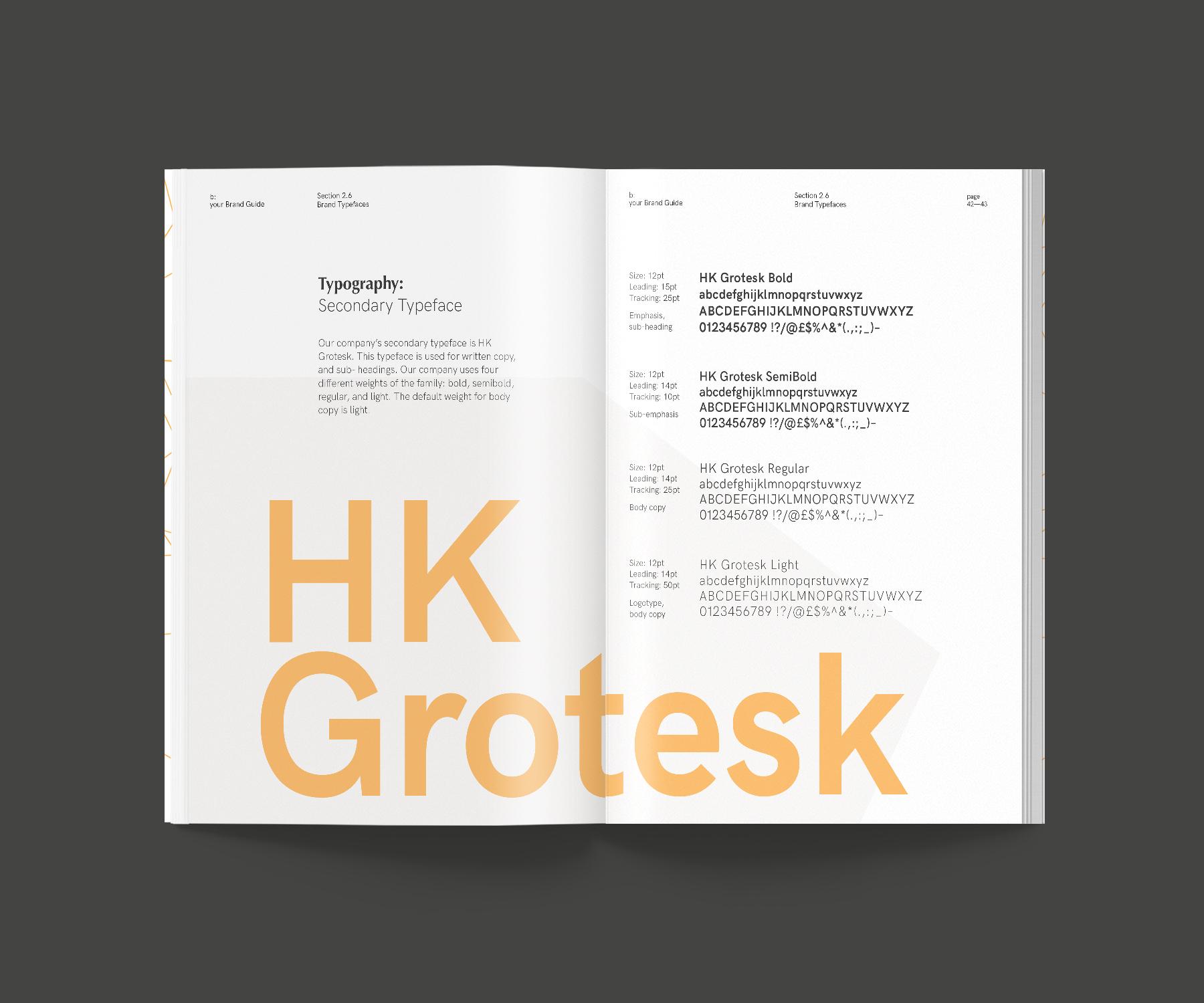 b_brandbook-type