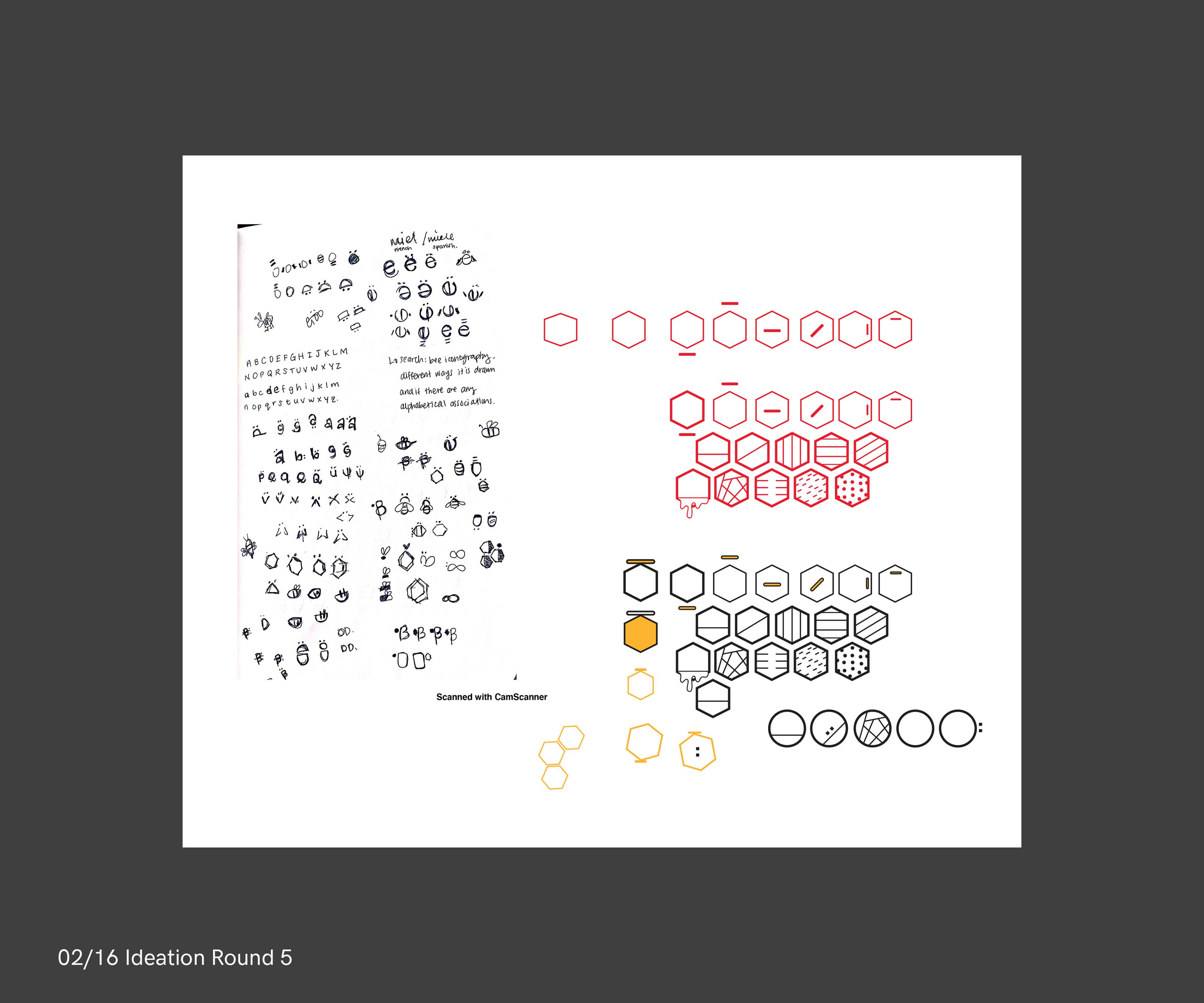 b_process_logo1_digital-2.1
